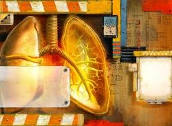 Richard_Borge_-_Lungs